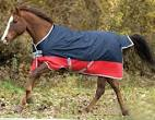 horsecloth
