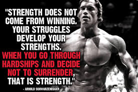 Arnold Schwarzenegger Quotes Fascinating Quotes Arnold Schwarzenegger Quotes Terminator