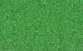 grass texture hd. Download Wallpaper 3840x2400 Cover, Background, Light, Grass . Texture Hd