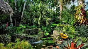 Small Picture 10 Easy Steps to Make Your Dream Tropical Garden a Reality Home