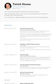 Front End Web Technical Lead Resume samples