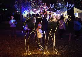 Denver Zoo Holiday Lights Denver Zoo Lights The Know Locations