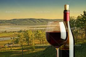 bottle and glass of red wine on the background of the rural landscape photo by observer bottle red wine