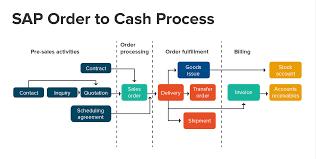 Cash Management Process Flow Chart In Sap