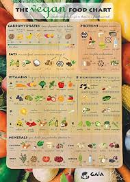 Gaia Shop The Vegan Food Chart All Nutrient Rich Foods