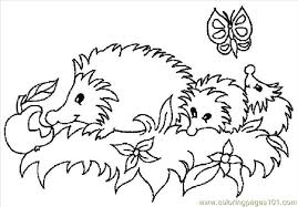 Small Picture Hedgehogs 01 27 Coloring Page Free Hedgehog Coloring Pages