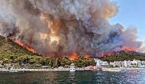 Marmaris'te orman yangını: 1 kişi hayatını kaybetti - Son dakika haberleri
