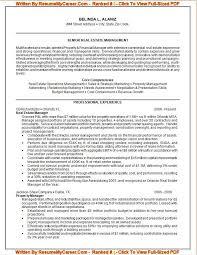 Proffesional Resume - Resume Cv