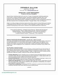 Sample Resume For Experienced Banking Professional Sample Resume for Experienced Banking Professional Luxury Entry 13