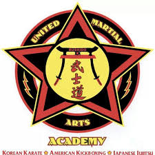 Image result for united martial arts academy logo