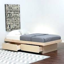 Twin Xl Bed Frame With Storage Enchanting Twin Platform Bed Frame ...