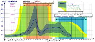 31 Day Menstrual Cycle Chart Catamenial Epilepsy Wikipedia