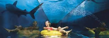 hydropolis underwater resort hotel. Visit The Underwater Hotel (The Hydropolis Dubai) Known At Atlantis Dubai, Enjoy Aquaventure And See Sea From Closest Approximately. Resort