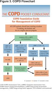 Copd Guidelines Chart The New Copd Pocket Consultant Guide App Journal Of The