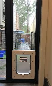 small pet cat flap dog door for glass security