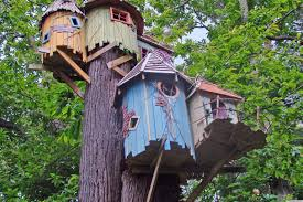 Creative ideas of Cool Tree Houses Camer Design