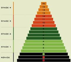 Usta Ratings Chart I Hit With With Myiesha Simmons Tennisopolis Tennis