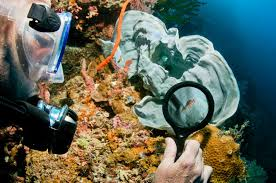 real underwater world. Wonderful World This New Challenge In Bohol Revolves Around A Real Police Investigation  The Underwater World That Daniel Told Us About  Intended Real Underwater World O