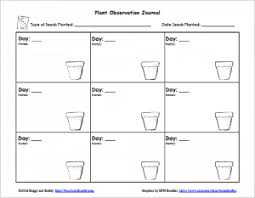 Plant Growth Observation Chart Gardening With Kids Planting Seeds With Free Printable