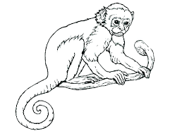Monkey Coloring Page Monkey Coloring Page Monkey Coloring Pages Free