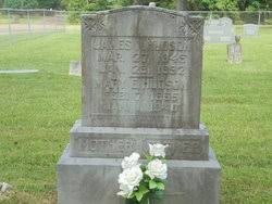 Mary Etta Ivy Hudson (1855-1940) - Find A Grave Memorial
