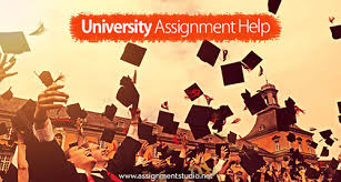 university assignment help assignment studio university assignment help