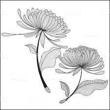 Great bunch of <b>Chrysanthemum</b>. Perfect for the flowers lover. EPS ...