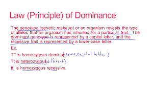 law principle of dominance the genotype genetic makeup or an organism reveals