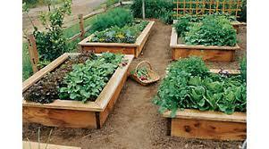how to grow a herb garden. Herb Gardening How To Grow A Garden E
