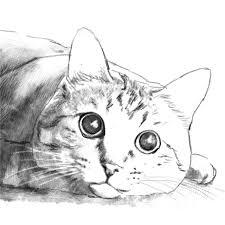 データ納品ペットの鉛筆画風の似顔絵cgイラスト画像を作成snswebサイトホームページなどに