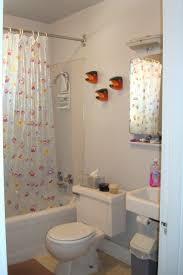 Bathroom  Shower Curtain Grey Bathroom Remodeling Bathroom - Basic bathroom remodel