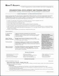 Internal Resume Template Fascinating Help Me Build A Resume Inspirational Valid Internal Resume Template