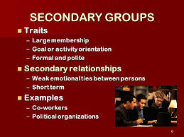 Secondary Group Groups Organizations Ppt Video Online Download