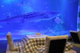 「のとじま水族館 フリー写真」の画像検索結果