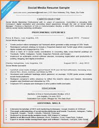 Additional Skills Resume Social Media Section 791 1024 Sample For