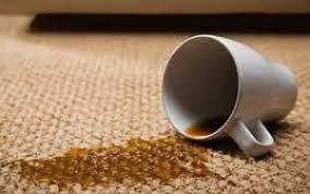 Don't worry, with a little vim and, yes, vinegar, that nasty stain will be a thing of the past. How To Remove Coffee Stain From Carpet Like A Pro