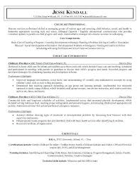 Professional Resume Objective Vbhotels Co