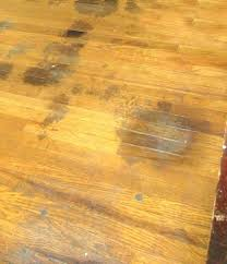 hardwood floor sn remover photo 2 of 6 removal pet sns dog urine on floors odor breathtaking dog urine on hardwood floor
