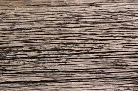 wood grain texture. Download High Resloution Dark Wood Grain Texture