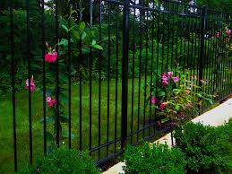 Image Result For Designers Ideas For Supporting Climbing Plants Climbing Plants For Fence