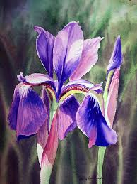 iris painting purple iris by irina sztukowski