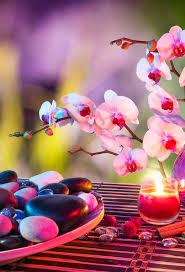 Zen Attitude 3wallpapers Iphone ...