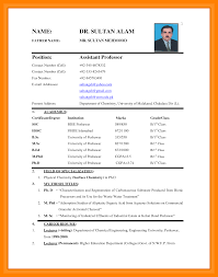how to make bio data format biodata format for job application in word free download pdf make