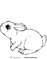 Remarkable Cute Bunny Coloring Pages Coloring For Babies Amvame