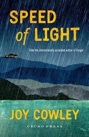 The Speed Of Light Book Speed Of Light