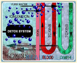 Ion Foot Cleanse Color Chart Ionic Cell Detoxifier