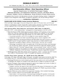 Awesome Collection of Sample Resume For Oil And Gas Industry About Format  Sample