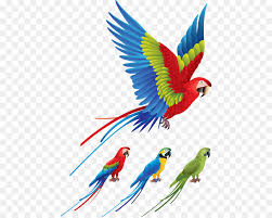 colorful birds flying clipart.  Flying Parrot Bird Redandgreen Macaw Clip Art  Colored Birds Flying In Colorful Birds Flying Clipart S