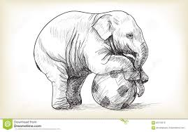 Baby Elephant Drawings Baby Elephant Playing Football Sketch And Free Hand Draw Stock