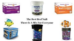 Best Reef Salt Mix Choosing The Best Salt For Your Tank